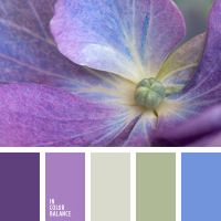 Color inspiration