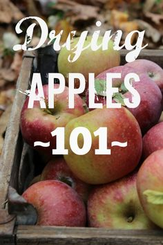 Want to save lots of money by making your own dried apples? How To Make Your Own Dried Apples | areturntosimplicity.com