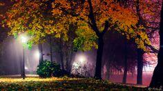 Let's Color The Night by tvurk.deviantart.com on @deviantART