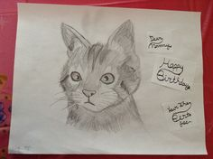 A Cat Drawing I Drew For My Moms Birthday