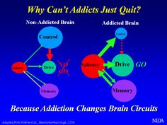 Changing Your Mindset and Quitting Addiction – Learning Mind