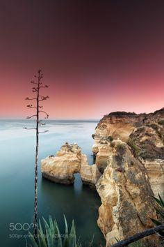 Armaçao dePera by Lujo  sky landscape sea sunset water travel coast ocean rocks seascape marina long exposure portugal algar
