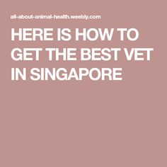 We all love our pets and we consider them as part of our families. If you actually look at different videos online, you would see that a lot of families let these pets grow with their children as. All About Animals, Animal Welfare, Singapore, Families, How To Get, Good Things, Pets, My Family, Households
