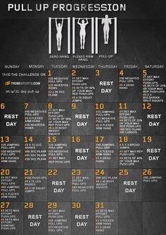 31 day pull up progression challenge