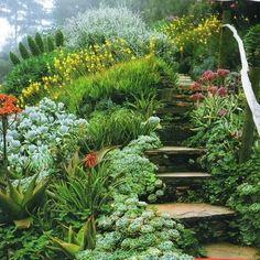 garden on a hill - Buscar con Google