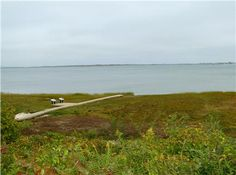 ...hike through the Audubon trails, overlook facing Sandy Neck in Barnstable, MA Cape Cod
