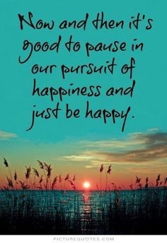 Now and then it's good to pause in the pursuit of happiness and just be happy. Picture Quotes.