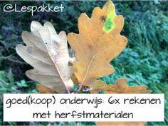 goed(koop) onderwijs - 6x rekenen met herfstmaterialen - Lespakket Preschool Crafts, Plant Leaves, Autumn, Fall, Teacher, Sheet Music, Professor, Fall Season, Fall Season