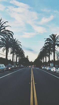 #carretera #palmas #hermoso #cielo #beautiful