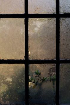 - 'till the sky became a color never named and changed my world - again - a new day. Rainy Window, Rain Photography, Portrait Photography, Photography Contract, Photography Settings, Photography Classes, Smell Of Rain, Rain Days, Sound Of Rain