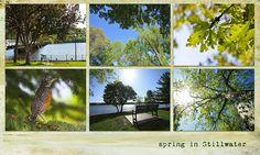 Spring in Stillwater Minnesota, Spring, Plants, Plant, Planting, Planets