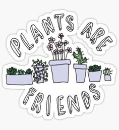 Plants Are Friends stickers featuring millions of original designs created by independent artists. Band Stickers, Laptop Stickers, Preppy Stickers, Tumblr Png, Cactus Stickers, Plants Are Friends, Tumblr Stickers, Buy Plants, Transparent Stickers