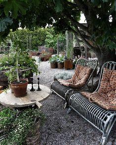 House Yard, Patio Plants, Decks And Porches, Terrace Garden, Shade Garden, Outdoor Projects, Dream Garden, Garden Planning, Outdoor Gardens