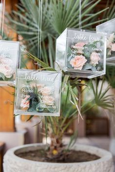sage green wedding transparent cube with table setting signs greenery and roses inside maria sundin photography Acrylic Wedding Invitations, Wedding Invitations Online, Wedding Seating, Wedding Table Numbers, Table Wedding, Wedding Colors, Wedding Flowers, Event Planning, Wedding Planning