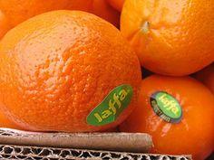 Jaffa Oranges