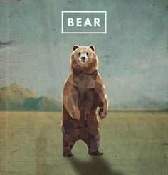 Geometric bear drawing done in Illustrator.