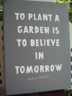 To plant a Garden is to believe in tomorrow ~Audrey Hepburn #garden #quote