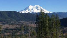 America's first public, legal, Ayahuasca Church & Retreat Center comes to Washington State, near the powerful Mt. Rainier Mountain & Spirit.