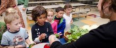 Can Parents Change Their School's Food? | The Edible Schoolyard Project
