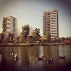 Un lugar para perderse - Parque de #DiagonalMar - #Barcelona @Diagonal Mar ~♥~