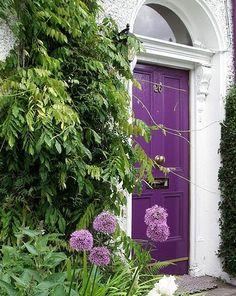 front #doors russian velvet 2 via sash windows london