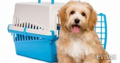 Alquiler De Guacales Para Mascotas Cali Se Alquilan Guacales para que lleve sus mascotas de viaje, .. http://cali.evisos.com.co/alquiler-de-guacales-para-mascotas-cali-id-472937