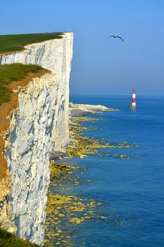Beachy Head, Sussex, England