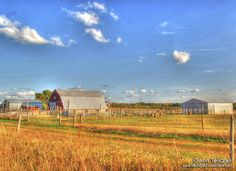 living on a farm seems like the best thing in the world.  Definitely on my  bucket list