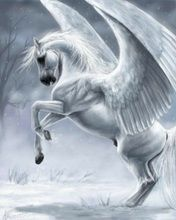 Pegasus - though considered Roman, these creatures were from Greek mythology; sometimes they had wings of feathers, and other times wings of skin or angels. Magical Creatures, Fantasy Creatures, Greek Mythical Creatures, Fantasy World, Fantasy Art, Winged Horse, Greek And Roman Mythology, Unicorn Art, Mythological Creatures