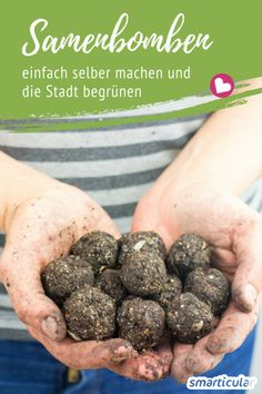 Samenbomben (Seedbomb) einfach selber machen With Seed Bombs, you can make barren spots in your environment bloom and create an oasis for bees and other insects. That's how you make her. Garden Seeds, Planting Seeds, Christmas Planner, Hydrangea Seeds, Dig Gardens, Seed Bombs, Kitchen Ornaments, Best Wedding Gifts, Plant Illustration