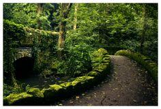 Over the fairy bridge