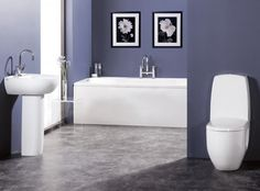cool color for bathrooms - Google Search