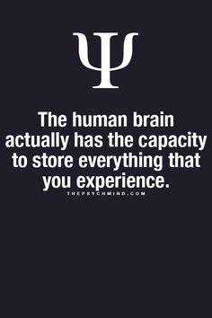 the human brain - http://thepsychmind.com/