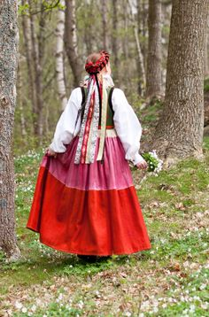 Albo kvinodräkt. Livkjol med skinnkjol. Fotograf Laila Duran Scania Folklore Folk Costume, Costumes, Norwegian Clothing, Wool Embroidery, Swedish Design, Bridal Crown, Traditional Dresses, Folklore, Fabric Design