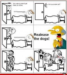WHY!? - Other - Aug 22, 2012 - Rage Comics - Ragestache