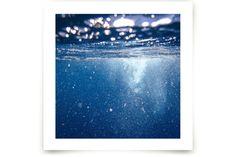 Deep Caribbean II by Kamala Nahas at minted.com