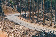 eucalipito_chapeu_estrada em Domingos Martins