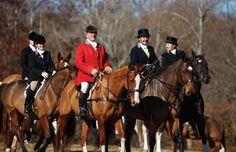 Members of the Deep Run Hunt Club Deep Run, Tally Ho, British Country, Hunt Club, Fox Hunting, Horse World, Travel And Leisure, Show Horses, My Ride