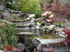 Serene Backyard waterfall and pond landscaping Backyard Water Feature, Ponds Backyard, Pond Landscaping, Landscaping With Rocks, Water Features In The Garden, Garden Features, Garden Waterfall, Natural Pond, Pond Design