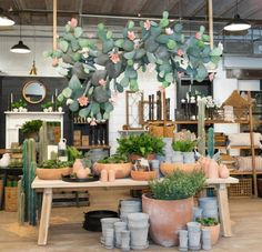 Spring at Magnolia Market: 2020 Magnolia Store, Magnolia Farms, Magnolia Market, Magnolia Mom, Visual Merchandising Displays, Visual Display, Flower Shop Interiors, Garden Center Displays, Magnolia Journal