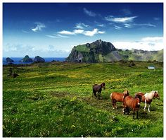 Mooie natuur in IJsland