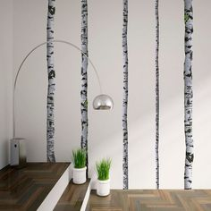 Super Real Birch Trees| Trees & Branches Wall Decals| WallsNeedLove