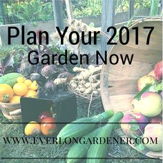 Now is the time to start planning for your 2017 garden!