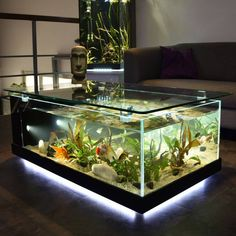 Breathtaking 8 Gorgeous Aquarium Tank Design Ideas For Living Room Decoration Most people love to keep fish. Not only making fish ponds but sometimes someone also chooses an aquarium that can be placed in the house. You could sa. Diy Aquarium, Aquarium Design, Aquarium Fish Tank, Aquarium Ideas, Fish Tank Table, Fish Tank Coffee Table, Coffee Table Aquarium, Fish Tank Stand, Coffee Tables