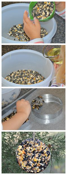The best recipe for homemade bird seed ornaments. Uses shortening or lard. These make great gifts. The best recipe for homemade bird seed ornaments. Uses shortening or lard. These make great gifts. Bird Suet, Bird Seed Feeders, Diy Bird Feeder, Squirrel Feeder, Bird Seed Crafts, Bird Seed Ornaments, Tree Crafts, Garden Ornaments, Homemade Bird Houses