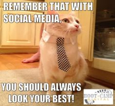 Always look your best on social networks! Be active, answer questions, share tips, and do anything that will make your brand look better! Marketing Meme, Social Media Marketing, Social Networks, Cat Memes, Funny Memes, Funny Shit, Funny Stuff, Late Night Jokes, Social Media Meme