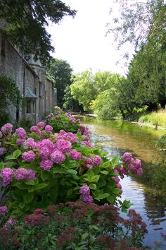 rosiesdreams: Simply lovely in French countryside Beautiful Landscapes, Beautiful Gardens, Beautiful Flowers, Beautiful Places, Beautiful Pictures, Amazing Photos, Hortensia Hydrangea, Hydrangeas, Pink Hydrangea