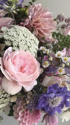Peonies, Tulips, Wholesale Flowers And Supplies, Diy Wedding, Wedding Flowers, Flowers For Sale, Fresh Flowers, Hydrangea, Orchids