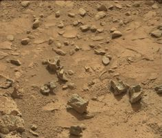 Did the Mars Curiosity Rover Find Fossils on Mars?