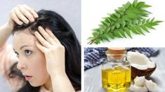 Curry Leaves and Coconut Oil Massage to Prevent Grey Hair Coconut Oil Hair Treatment, Coconut Oil Hair Growth, Coconut Oil Hair Mask, Grey Hair Remedies, Natural Remedies, Coconut Oil Massage, Prevent Grey Hair, Oil For Curly Hair, Hair Mask For Growth